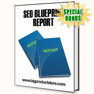 Special Bonuses - June 2015 - SEO Blueprint Report