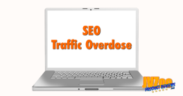SEO Traffic Overdose Review and Bonuses