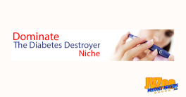 Diabetes Destroyer PLR Review and Bonuses
