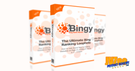 BINGY Review and Bonuses