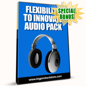 Special Bonuses - January 2017 - Flexibility To Innovate Audio Pack