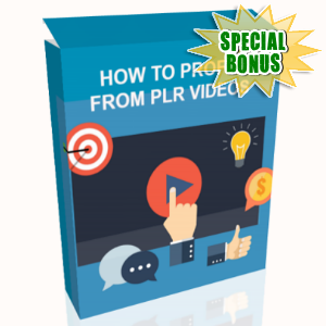 Special Bonuses - July 2017 - How To Profit From PLR Videos Video Series