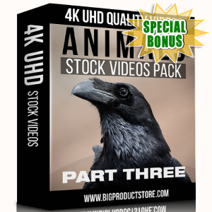 Special Bonuses - November 2017 - Animals 4K UHD Stock Videos Part 3 Pack