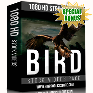 Special Bonuses - November 2017 - Bird 1080 HD Stock Videos Pack