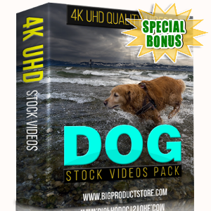 Special Bonuses - November 2017 - Dog 4K Stock Videos Pack