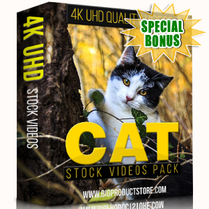 Special Bonuses - November 2017 - Cat 4K Stock Videos Pack