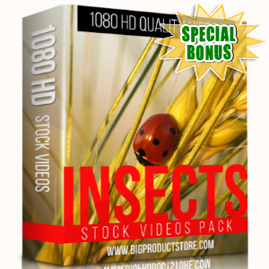Special Bonuses - December 2017 - Insects 1080 HD Stock videos Pack