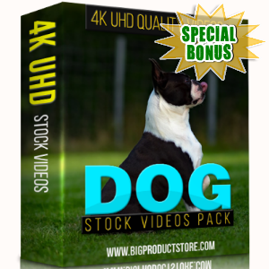 Special Bonuses - December 2017 - Dog 4K UHD Stock Videos Pack