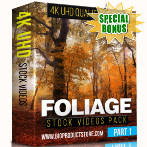 Special Bonuses - January 2018 - Foliage 4K UHD Stock Videos Part 1 Pack