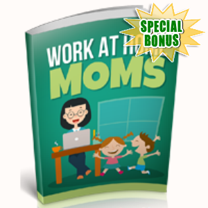 Special Bonuses - December 2018 - Work At Home Moms Part 1