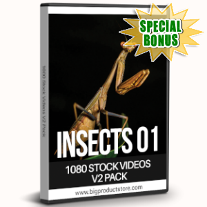 Special Bonuses - July 2019 - Insects One - 1080 Stock Videos V2 Pack