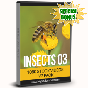 Special Bonuses - August 2019 - Insects Three - 1080 Stock Videos V2 Pack