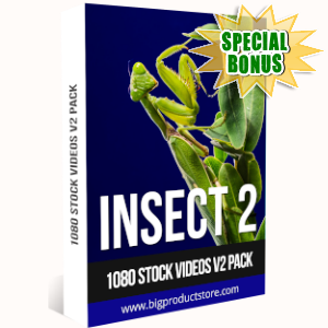 Special Bonuses - September 2019 - Insect 2 - 1080 Stock Videos V2 Pack